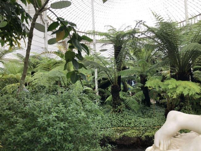 glasgow-botanical-garden-day-1-14