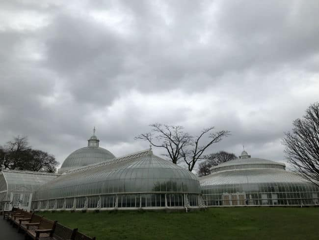 glasgow-botanical-garden-day-1-2
