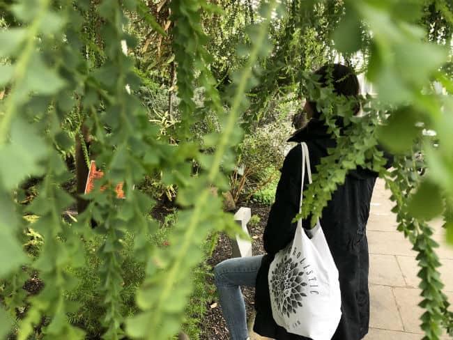 glasgow-botanical-garden-day-1-21