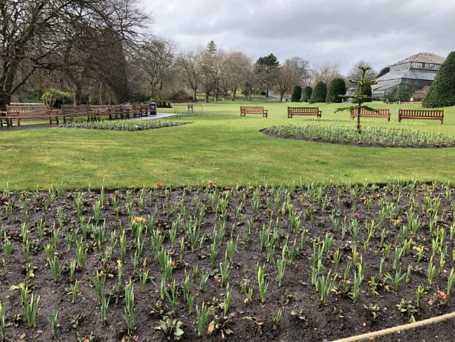 glasgow-botanical-garden-day-1-55
