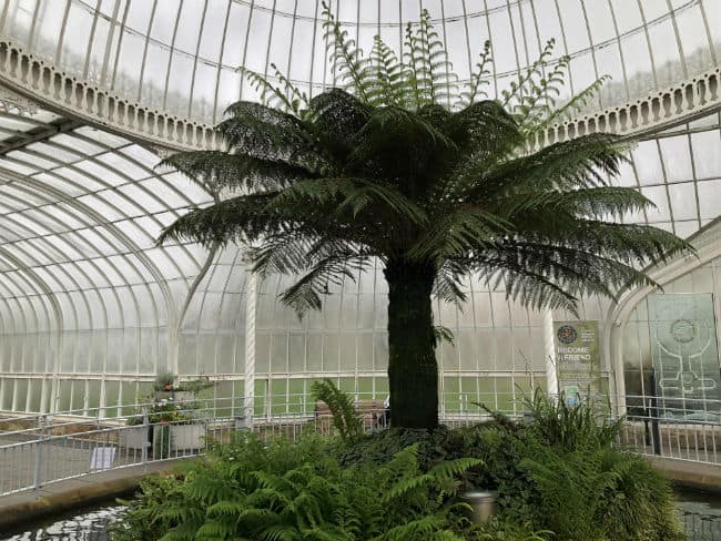 glasgow-botanical-garden-day-1-9