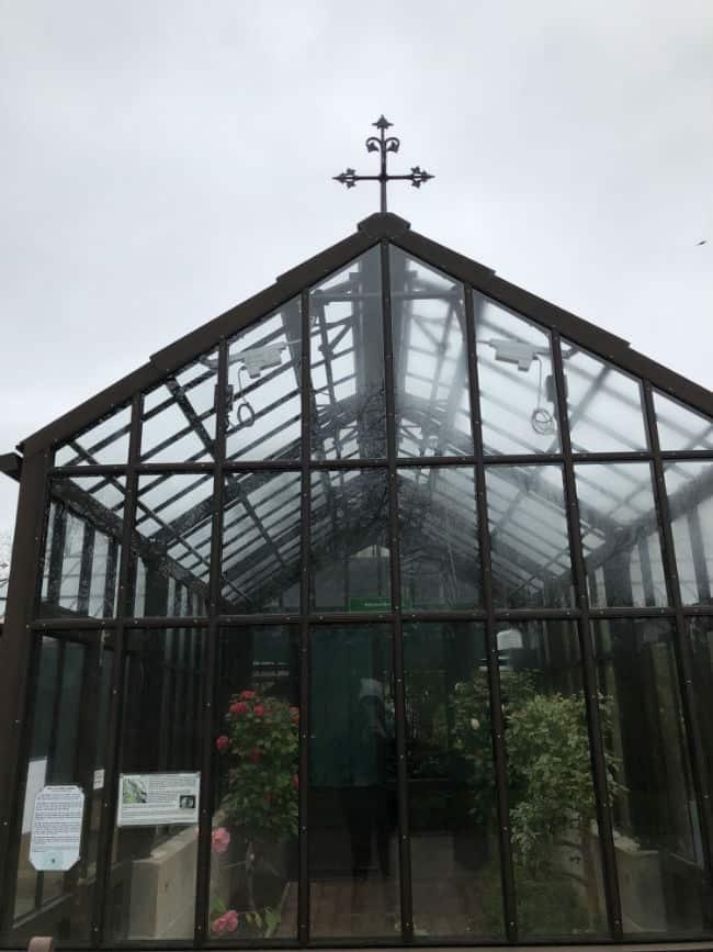 glasgow-botanical-garden-day-2-43