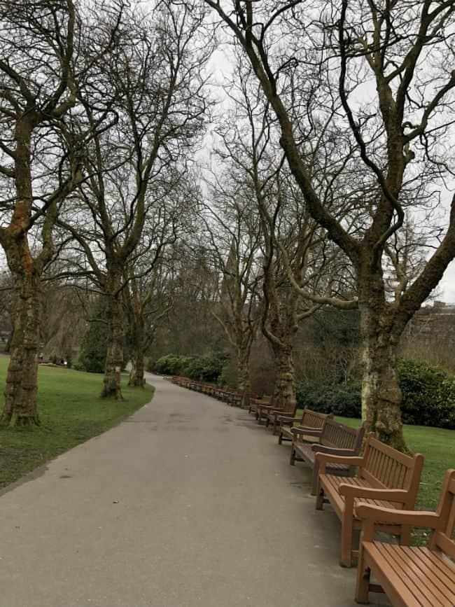 glasgow-botanical-garden-day-2-46