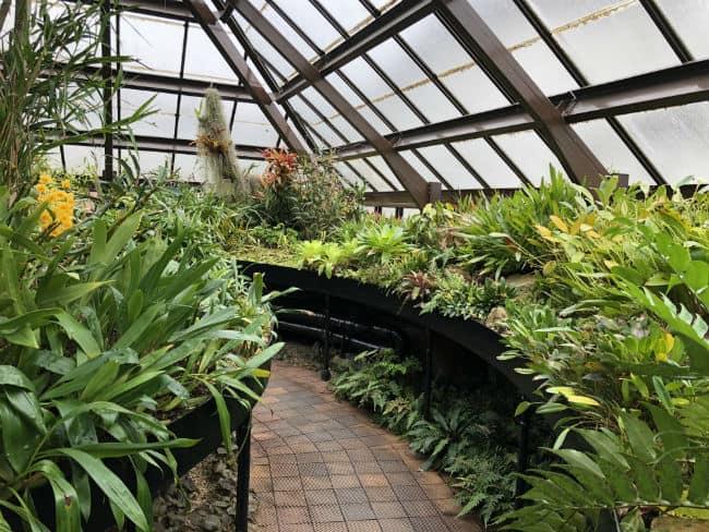 glasgow-botanical-garden-day-2